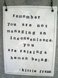 you-are-not-managing-an-inconvenience